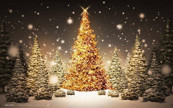 (2012) Weihnachten mit Freesoft-Board 2012