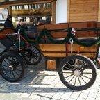 Kutsche in Törwang