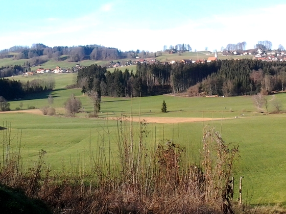 Panoramabild mit Blick nach Törwang